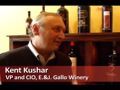 Tomorrow's CIO: What it Takes in the Wine Industry