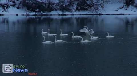 EnviroNews Idaho Officially Launches With Breathtaking Footage Near Swan Lake
