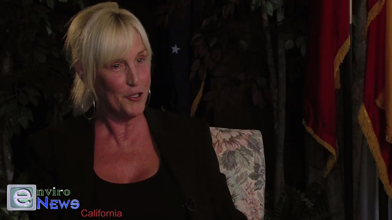 Erin Brockovich Is Asked: 'Why no time for environmental crime?'