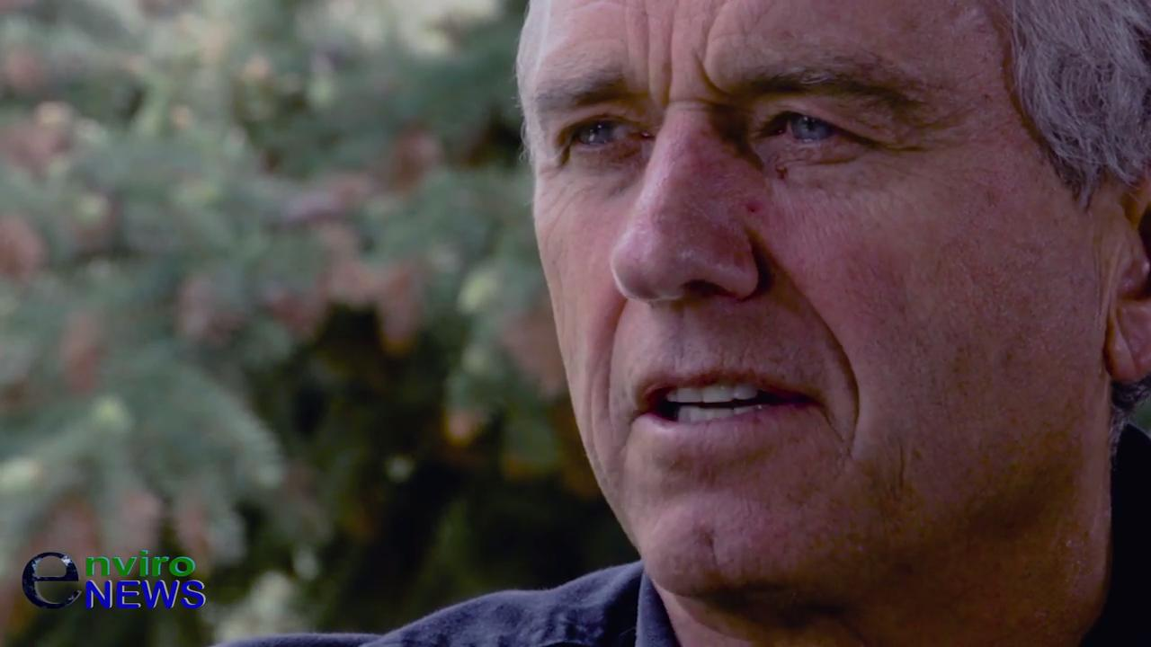 America's Mercury Crisis: 'Fish consumption is dangerous now' — Robert Kennedy Jr. Weighs in