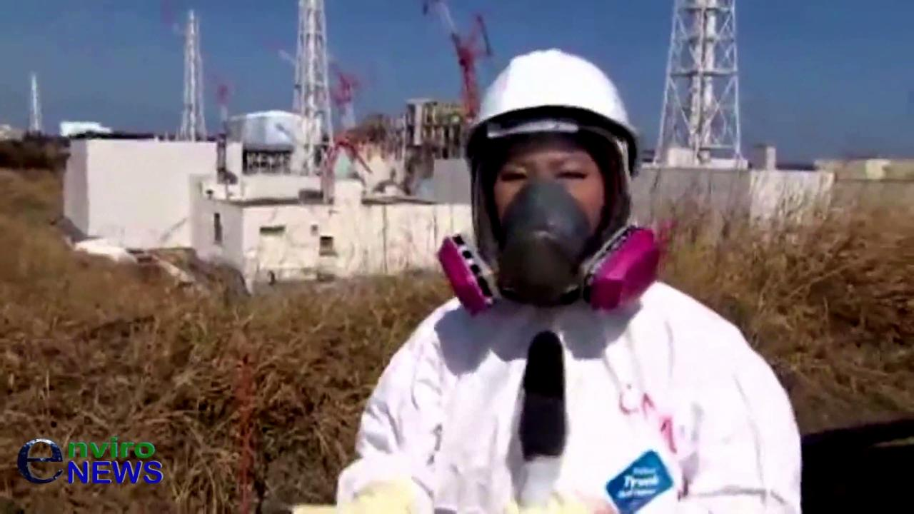 Should GE's Mark 1 Nuclear Reactor Be Recalled Worldwide Like a Faulty Unsafe Automobile? (Pt. 5)