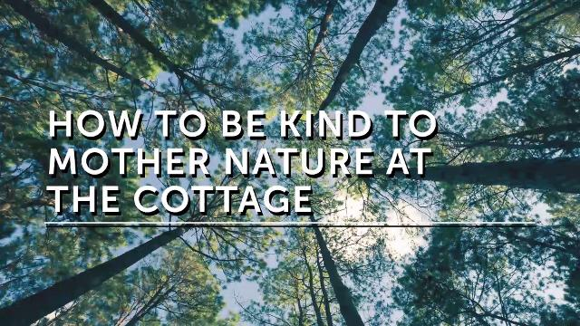 How to design an eco-cottage