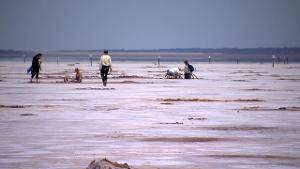 Crystal digging at Salt Plains National Wildlife Refuge