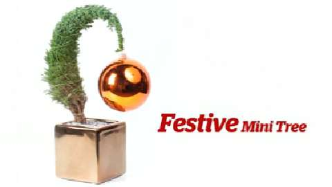 How to make a festive mini-tree