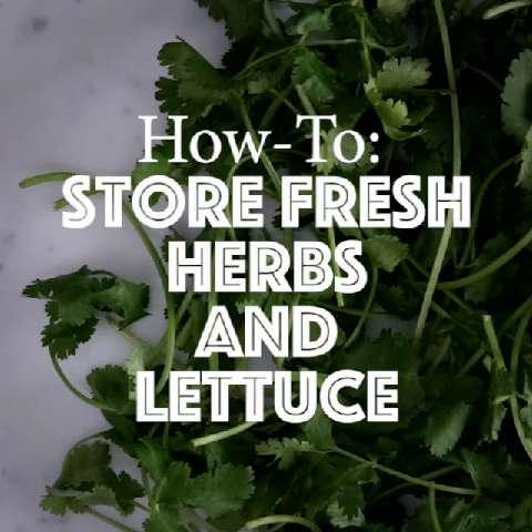Quick tips: How to store fresh herbs and lettuce