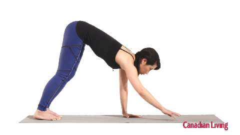 Plank walkout with toe taps: Challenge your core