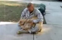Dog Loses it When Soldier Returns