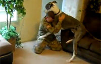 HUGE Pup Stoked to See Soldier Home