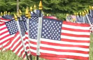 Vets Place 6,000 Flags on Campus