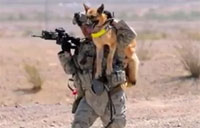 America's Canine Heroes, Part I