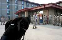 Dog Has Waited Long Enough for Soldier