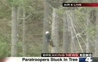 Breaking! Paratroopers Stuck in Tree