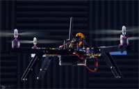 The Mind of a Quadrotor