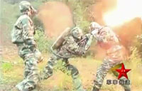 Chinese Army Fights Wasp Colony