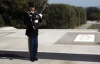 Tomb of the Unknown Soldier Silences Crowd