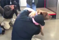 Veteran Reunites with His War Dog