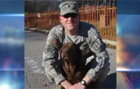 War Dogs Join Veteran's Day Parade