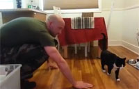 How Cats Welcome Home the Troops