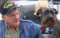 Dog who Escaped Death Now Helping Vets