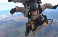 Spanish Soldiers Take K9s on Tandem Jump
