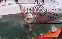 Coast Guard Rescues Loggerhead Turtle