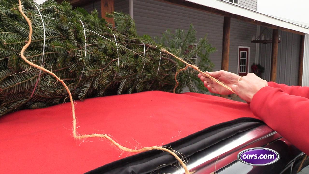 Avoid #TannenbaumTrouble With These Christmas Tree Transport Tips