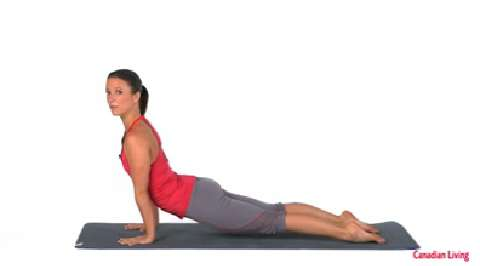 How to do the upward dog yoga pose