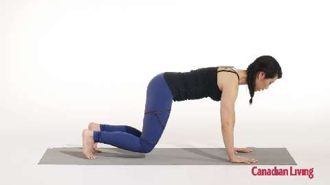 Knee hover with knee taps: Strengthen your abs and back
