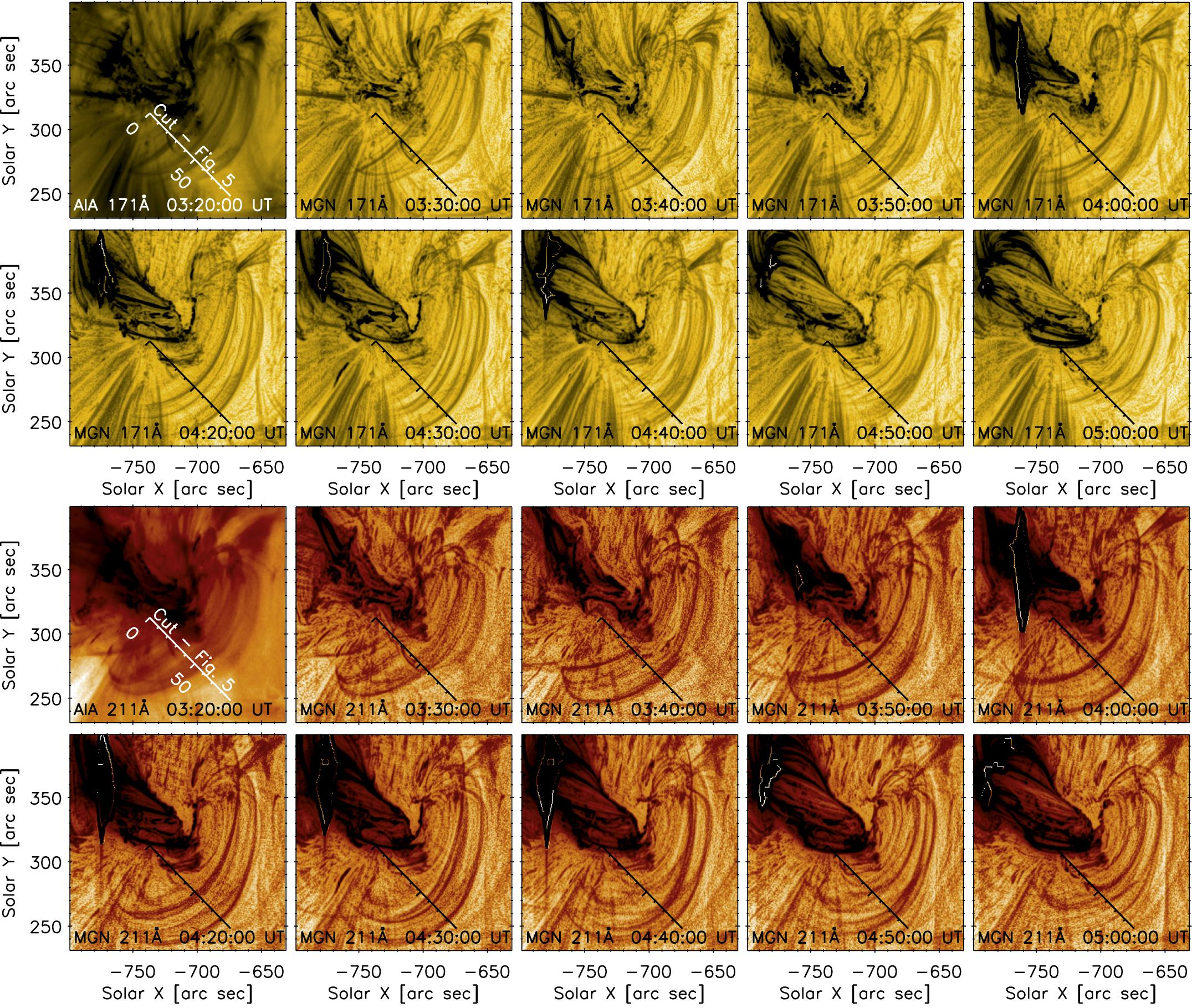 Expanding and Contracting Coronal Loops as Evidence of