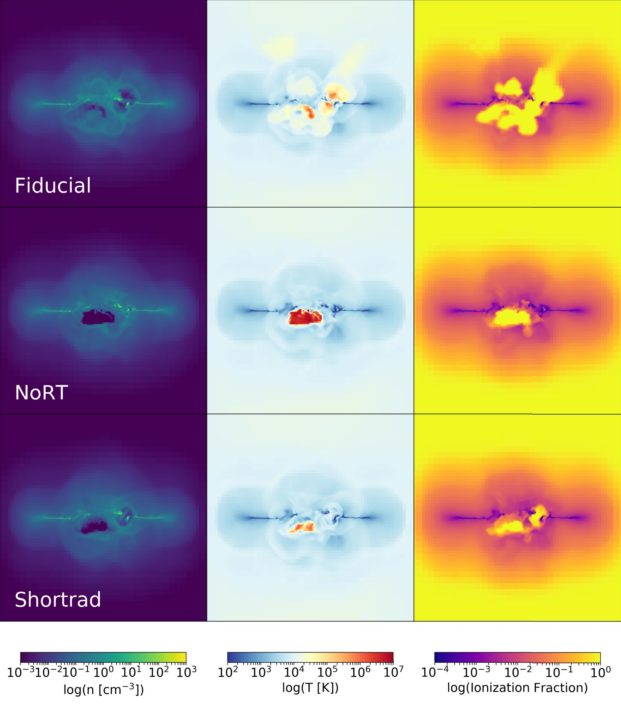 Stellar Radiation Is Critical for Regulating Star Formation and
