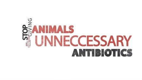 Overuse of antibiotics in animals is dangerous for people