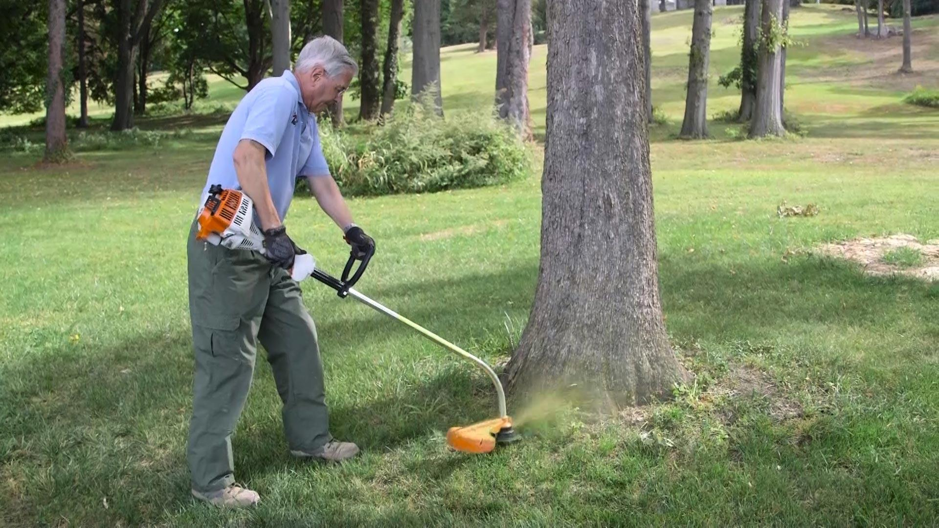 Best String Trimmer Buying Guide - Consumer Reports