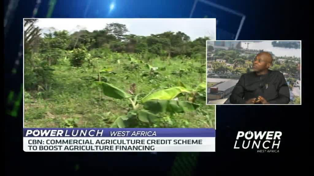 Boosting Nigeria's cocoa yields