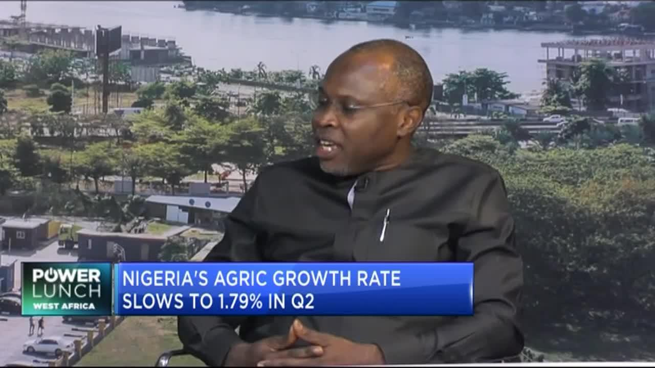 Akin Laoye on how Nigeria can fulfil its agricultural potential