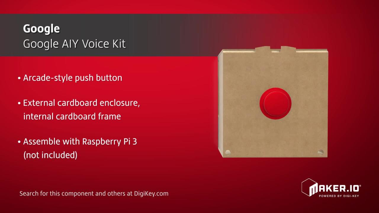Seeed Google AIY Voice Kit | Maker Minute
