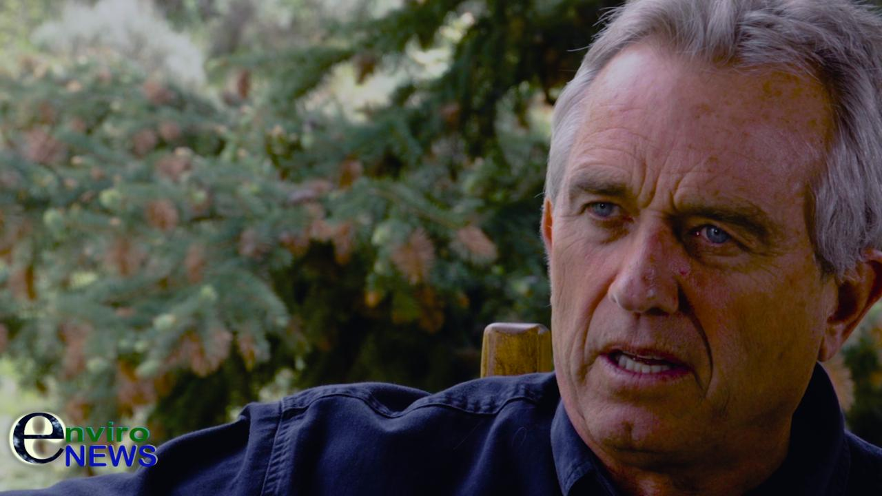 Robert Kennedy Jr.: 'Concentrated Animal Feeding Operations (CAFOs) Are Destroying Democracy'