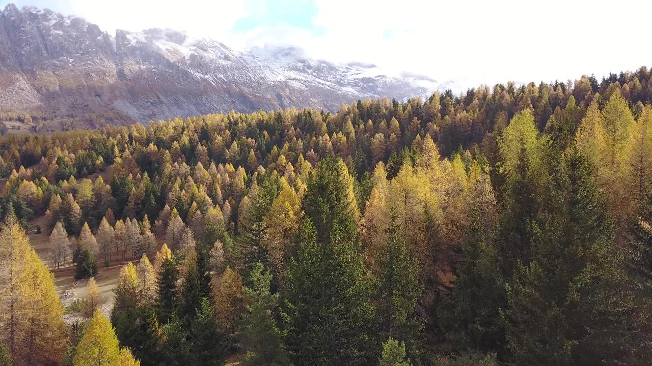 French Alps Fall 02