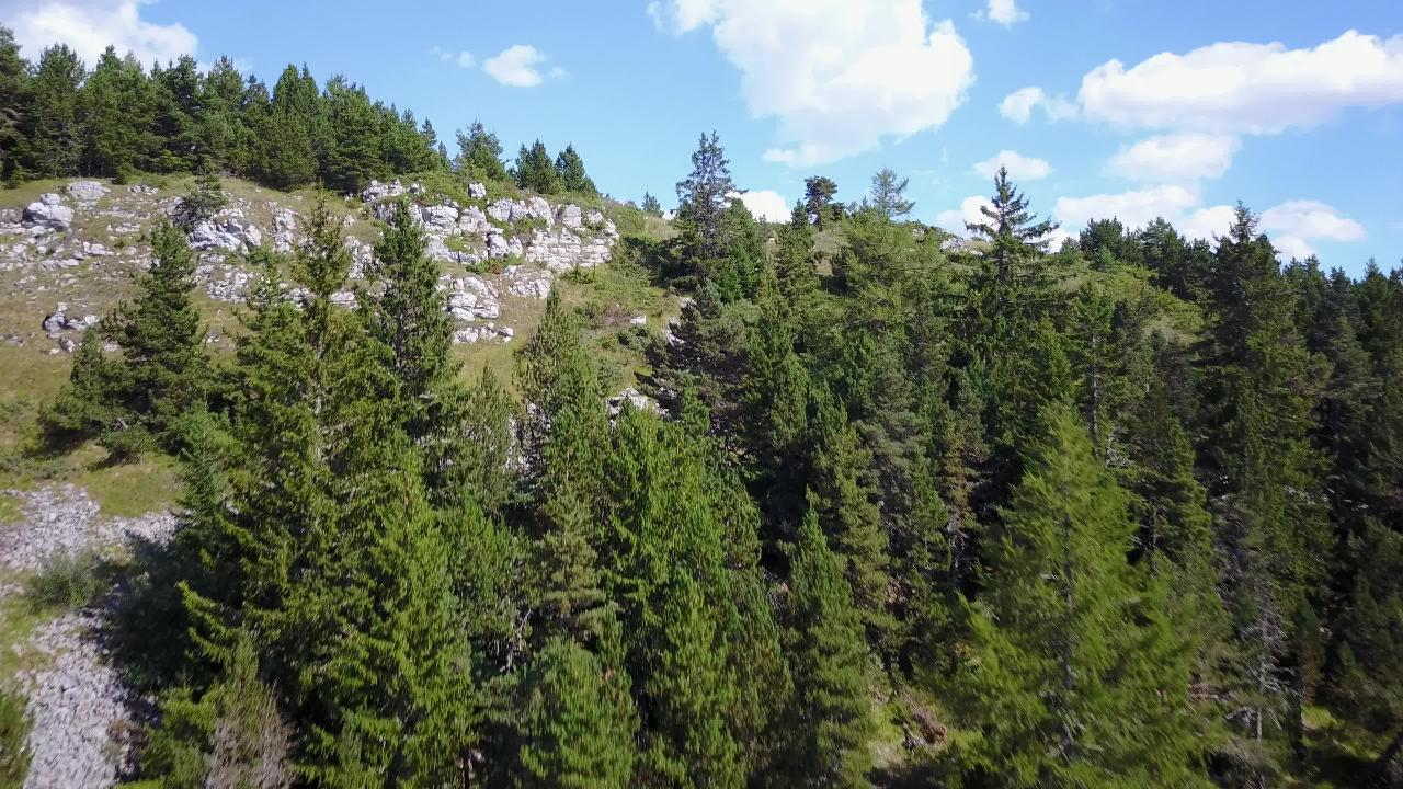 French Alps Summer 03