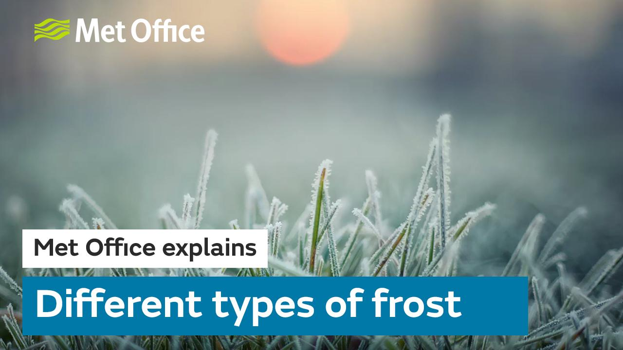 We explain how it forms and the different types of frost you can find.