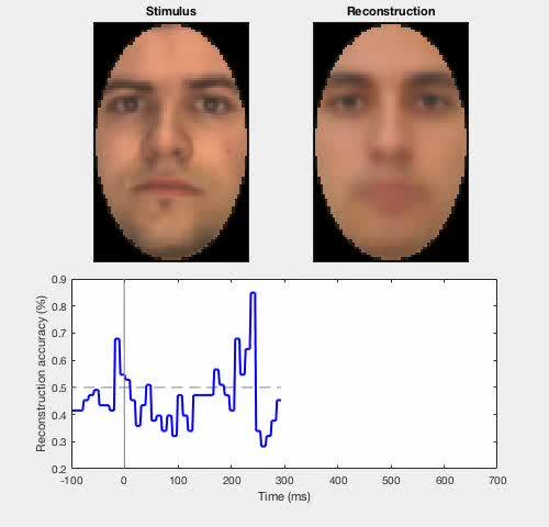 The Neural Dynamics of Facial Identity Processing: Insights from EEG