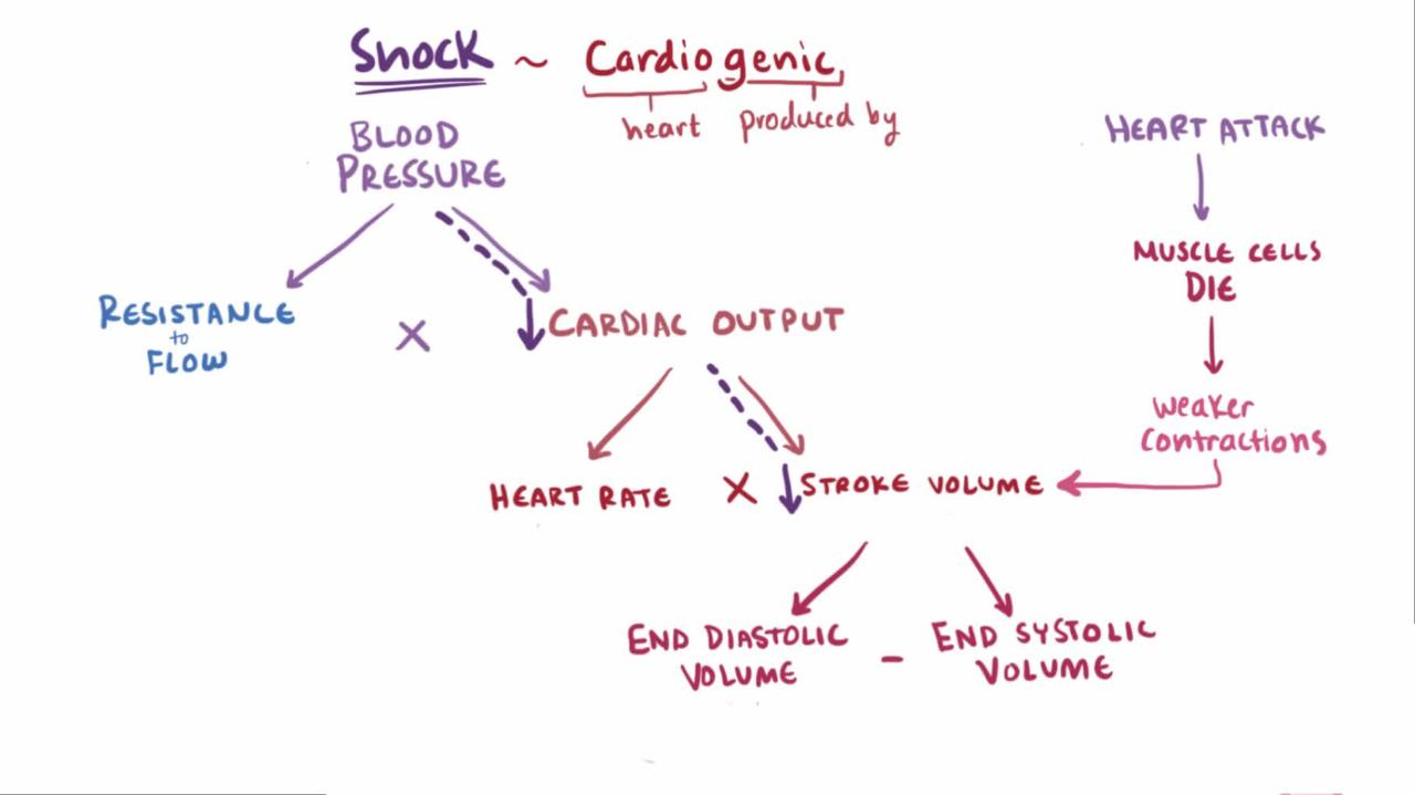 fluid therapy in a patient of shock begins with