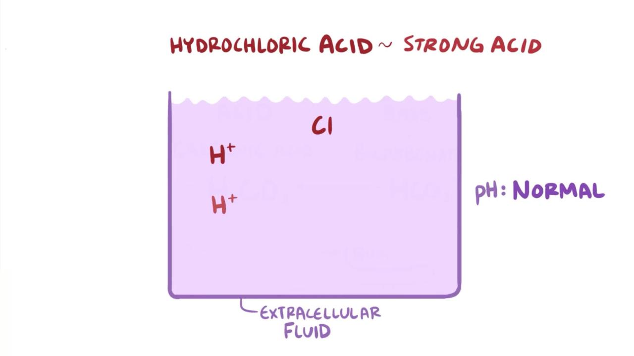 Overview of Physiologic pH and Buffers