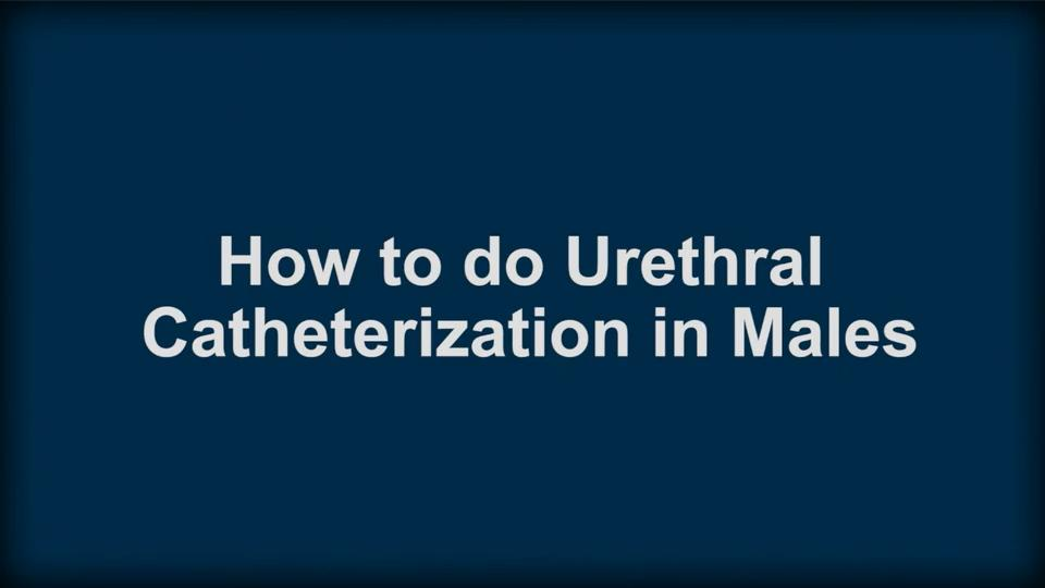 How To Do Urethral Catheterization in Males