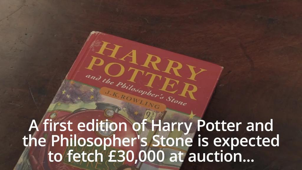 Harry Potter removed from US school library amid fears it