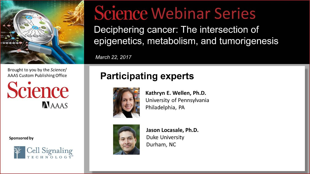Deciphering cancer: The intersection of epigenetics, metabolism, and