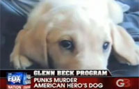 Punks Kill Wrong Man's Dog