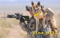 New Book Honors 'Soldier Dogs'