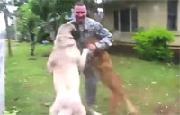 Military Reunions with Man's Best Friend