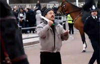 Terrorist Tased at Buckingham Palace
