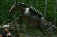 War Horse Statue Unveiled at Museum
